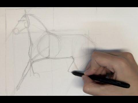 Cómo dibujar un caballo realista - Parte 1 - YouTube