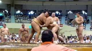 2014年8月16日(土)、札幌巡業に行って来ました! 宝富士(Takarafuji...