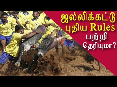 """jallikattu begins with new rules tamil news, tamil live news, news in tamil red pix   After a turbulent 2017, which witnessed widespread protests for jallikattu, resulting in Tamil Nadu government enacting a special legislation to circumvent the ban on the sport, the three places in Madurai renowned for the sport – Alanganallur, Palamedu and Avaniapuram – are gearing up for a 'regular' jallikattu during Pongal. """"Finally, jallikattu happened only on February 10, 2017. This year, however, we are expecting the event to be a smooth affair,"""" he said. Echoing his thoughts, P. Karthigai Rajan, secretary, Palamedu Grama Podhu Mahalingaswamy Madathu Committee, which is in charge of organising jallikattu in Palamedu, said that last year witnessed unusually large number of visitors because of the protests. """"People came in large groups from different places across the State. We even erected a separate gallery to accommodate those who participated in the protest. We are not sure if there will be similar participation this year,"""" he said. A.K. Kannan, president, Jallikattu Organising Committee, Avaniyapuram, which hosts the first jallikattu in the district on the day of Pongal, followed by Palamedu and Alanganallur, said that enthusiasm among the sponsors was also slightly less this year. """"Last year, sponsors were proactive. In Alanganallur and Palamedu, even cars and expensive bikes were given away as gifts. It is not the same this year. It is also because the businesses are not generally doing well due to new tax regime and other factors,"""" he said. Organisers in all the three villages, however, said that they had begun to receive overwhelming enquiries from bull owners and tamers. The vaadi vasal and galleries are already sporting a new look and the temple rituals, to be performed ahead of the event, would begin in a few days, the organisers said. Collector K. Veera Raghava Rao has called for a meeting on Wednesday with the organisers and officials from various departments to d"""