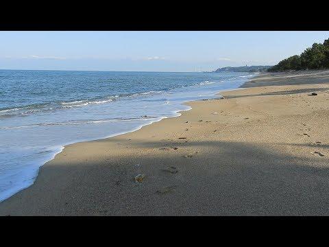 Harmony on the beach 渚のハーモニー【2K/60fps】