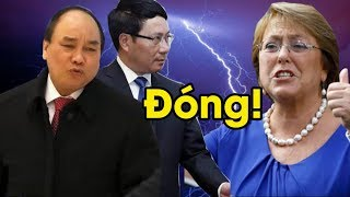 Căng thẳng vụ vây cá mập, Chính phủ Chile sẽ cho đóng cửa ĐSQ Việt, và kiện ra tòa quốc tế? thumbnail