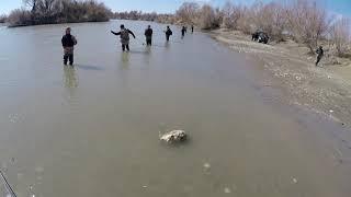 рыбалка на реке Каратал ловля жереха 2021 выезд второй