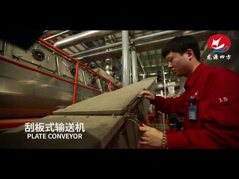 SIFANG FISH MEAL MACHINE / 2000 TONS PER DAY FISH MEAL PLANT