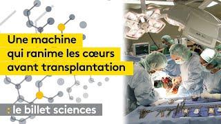 Une machine ranime les cœurs avant transplantation