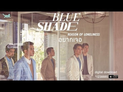Blue Shade - อยากเจอ (Reason of loneliness) [Official Audio]