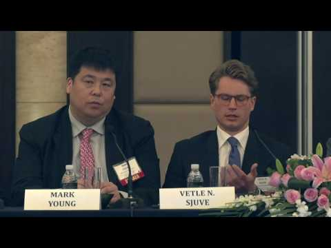 2017 2nd International Shipping Forum - China - Private Equity & Alternative Financing Panel