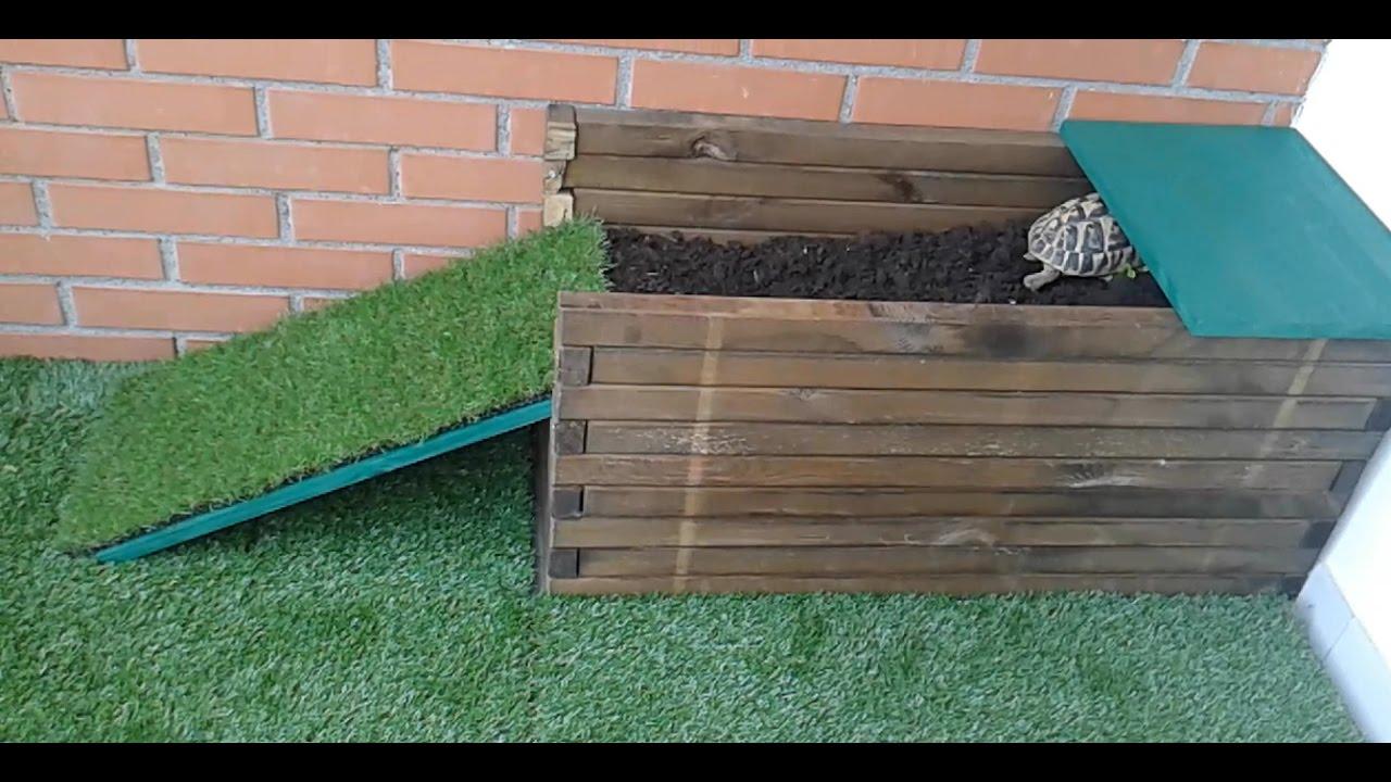 terrario per tartarughe terrestri youtube
