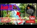 Aneh Masteran Suara Pleci Seperti Tikus  Mp3 - Mp4 Download