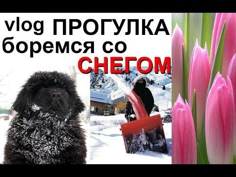 Vlog: Боремся со СНЕГОМ снегоуборочная машина, ПОДАРОК на 8 марта и ВЕСЕННЯЯ прогулка