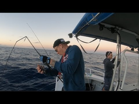 Fishing The Keppels Ep 2 Pinnicles How Did He Do That!!??