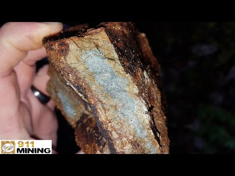 Prospecting A New Gold & Silver Showing Exposed By A Logging Company