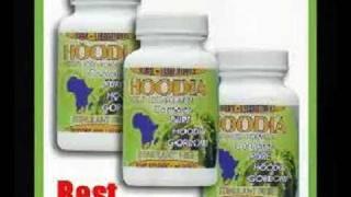 Hoodia Gordonii Diet Pills for Weight Loss