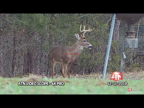 South Carolina Deer Hunt | Bob Redfern's Outdoor Magazine R