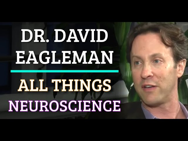 Dr. David Eagleman - All Things Neuroscience