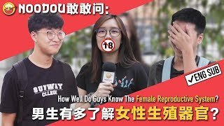 【NOODOU敢敢问】男生有多了解女性生殖器官? How Well Do Guys Know The Female Reproductive System?