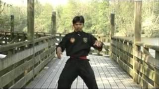 Pencak Silat - Techniques de Combat