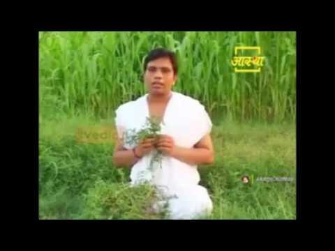 Ayurvedic Treatment For Pus Filled Wound, Abscess & Injuries Acharya  Balkrishna