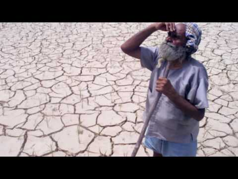 Desertification (solutions and action)