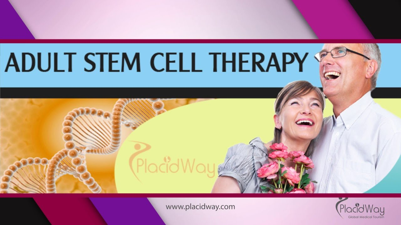 cells Adult cure stem