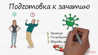 подготовка к зачатию. Анализы для мужчин. Инфекции, спермограмма - RedCells ru