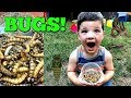 Caleb & Mommy Play Bug Hunt For Super Worms and REAL BUGS OUTSIDE! Pretend Play with Insects!