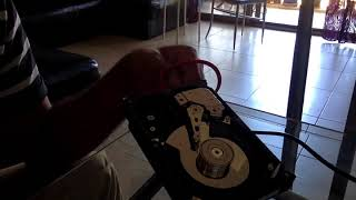 squeaking hard drive sound. Very loud