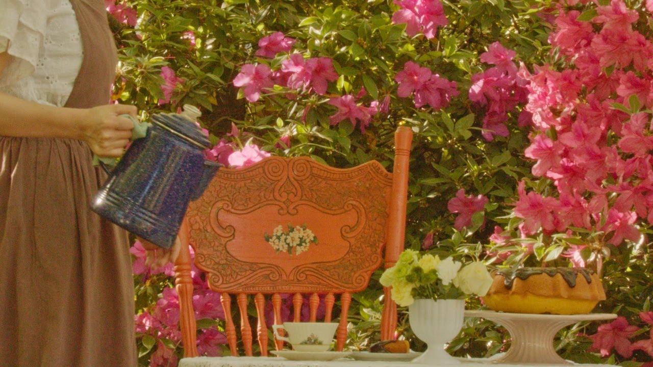 田舎の春ルーティン|ブラジル風キャロットケーキ|ハチドリをお迎え