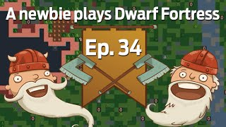 A newbie plays Dwarf Fortress 2014: Ep. 34