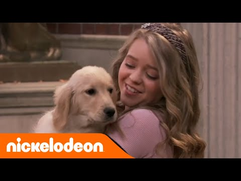 School of Rock | Un cane per Summer | Nickelodeon Italia