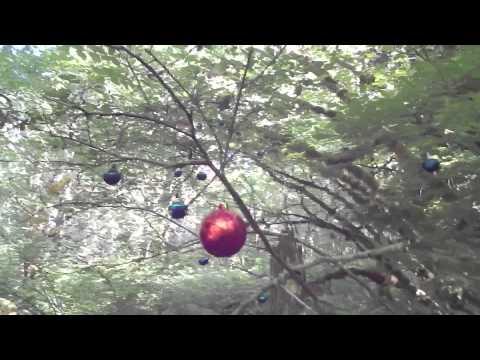 Ornament Trail