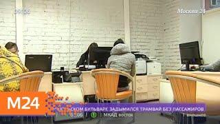 Кредиторы за долги начали забирать домашних животных - Москва 24