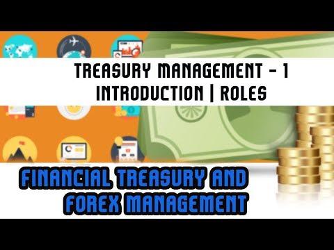 forex treasury management