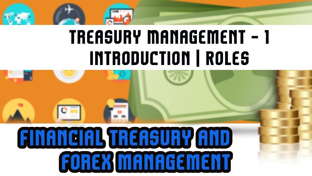 Forex treasury management annualized return on investment formula real estate
