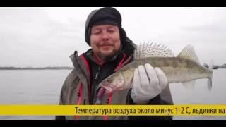 смазка СМС 9 для зимней рыбалки