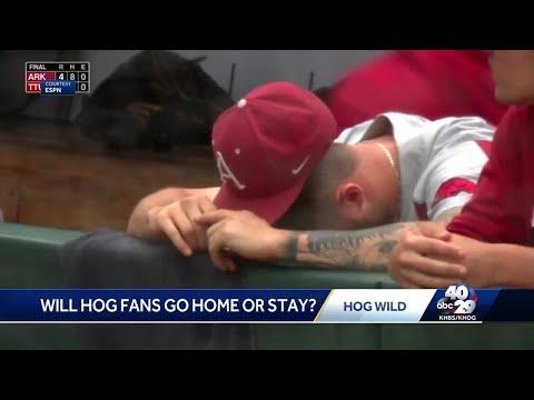 Steve Knoll - Hogs CWS Hopes Comes to a Crashing Halt