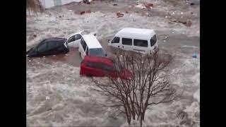 2011년 3월 11일 동일본대지진후 스나미 SouthKorea channel