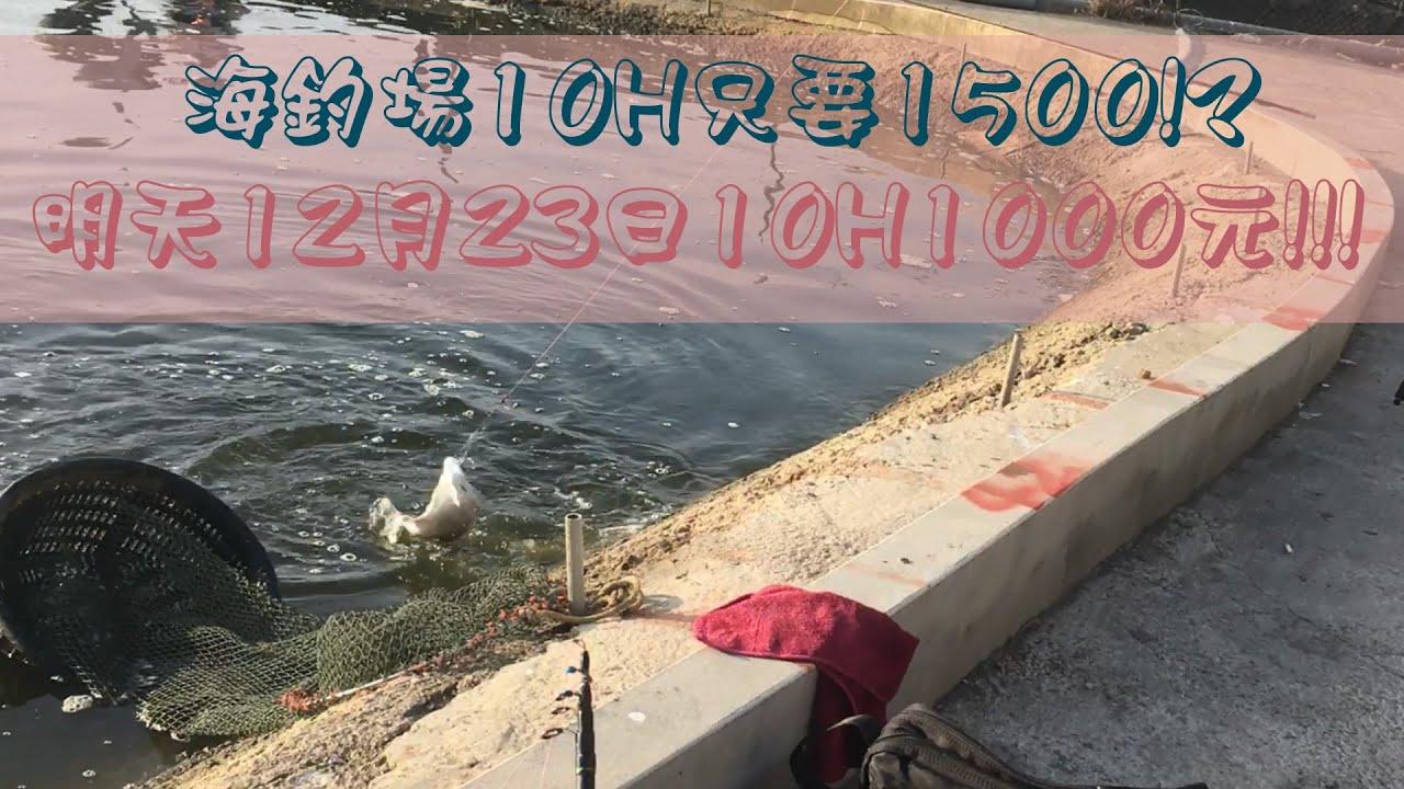 海釣場10小時只要1500元!明天只要1000元!?|伸港鑫吉利海釣場|清池活動 - YouTube