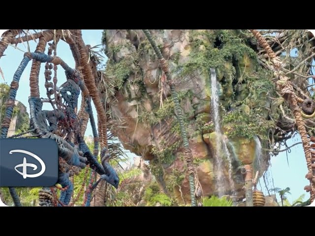 finding-artistic-inspiration-for-pandora-the-world-of-avatar