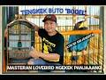 Tengkek Buto  Bogel  Atm Bf Mojokerto Cocok Buat Pancingan Dan Masteran Lovebird Ngekek Panjaang  Mp3 - Mp4 Download