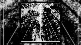 Bosc Fosc - Hipnosis arbĂłrea (Single track)