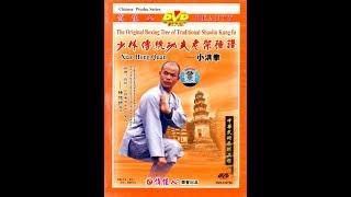 Shaolin small flood kung fu (xiao hong quan) A