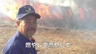 ヨシ焼き@浮野の里 加須 のうるし 三俣消防団