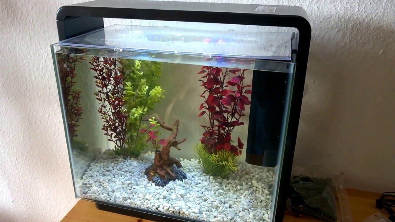 Superfish home 40 aquarium youtube - Petit aquarium design ...