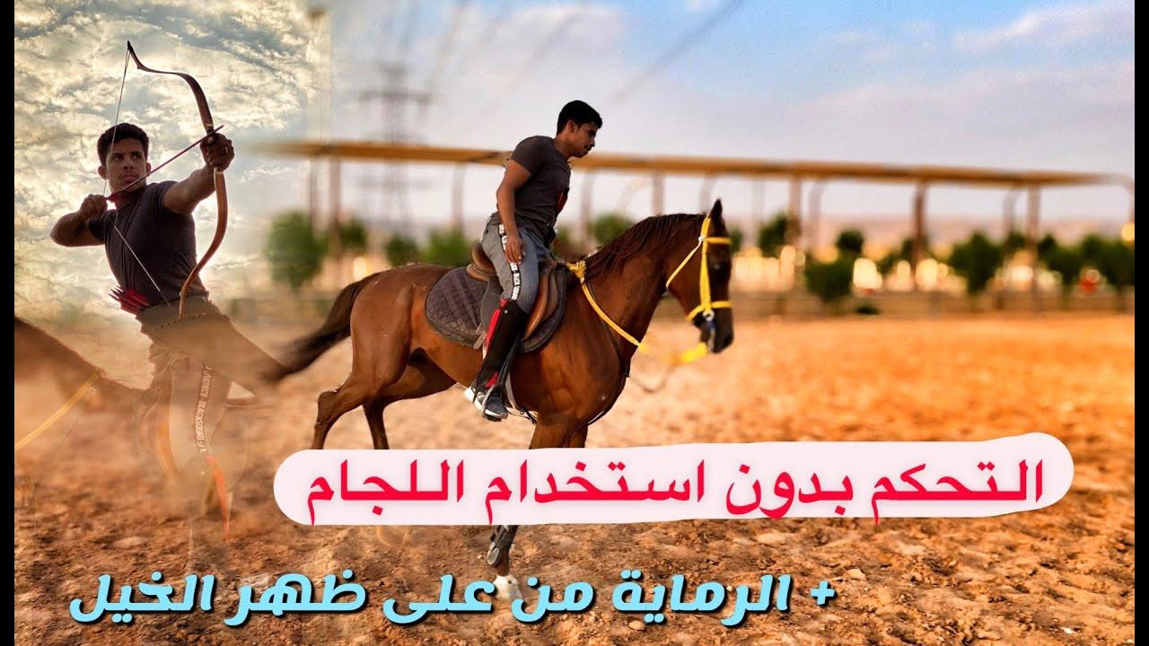 شرح لتعليم الخيل على الوقوف بدون ضرب او عنف التغزيل How To Teach A Horse To Rear Youtube