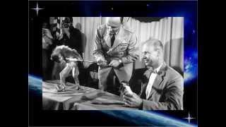 Топ 6 животных в космосе