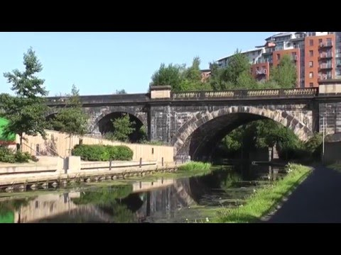 Wildlife and the countryside alongside Leeds & Liverpool canal