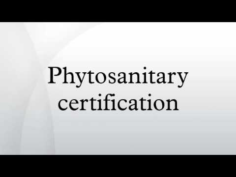 Phytosanitary certification - YouTube