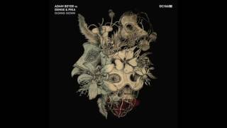 Adam Beyer Vs Dense Pika Future Drumcode DC166