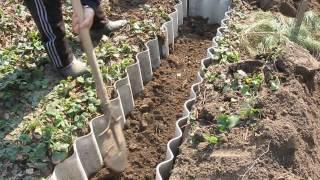 """Траншейный способ посадки малины """"ПОЛКА""""( часть 1)"""