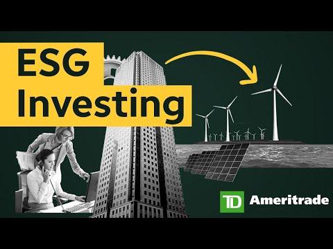Socially Aware Portfolios and ESG Investing